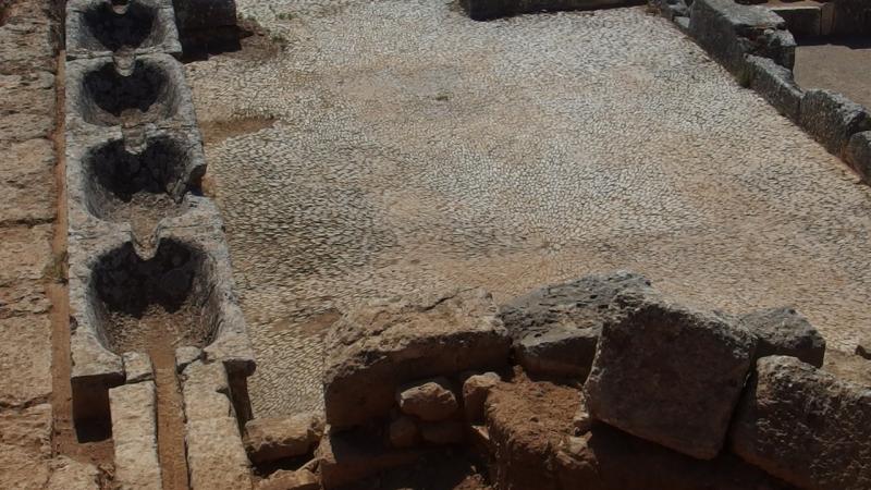 Ερέτρια-Αρχαίο Γυμνάσιο (1)