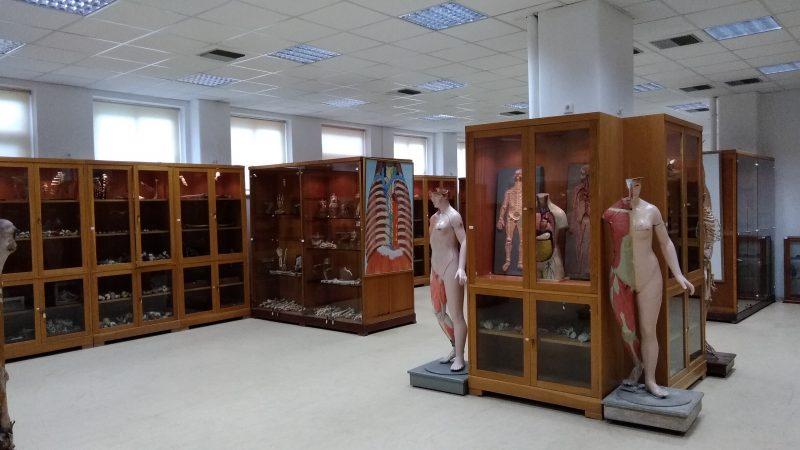 ΕΔΡΑ ΑΝΑΤΟΜΙΑΣ: Εσωτερική άποψη του Μουσείου.