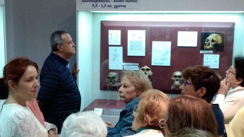 ΑΝΘΡΩΠΟΛΟΓΙΚΟ ΜΟΥΣΕΙΟ ΙΑΤΡΙΚΗΣ ΣΧΟΛΗΣ : Η  κα Πρωτόππα εξηγεί  στους Φίλους τα εκθέματα του Μουσείου.