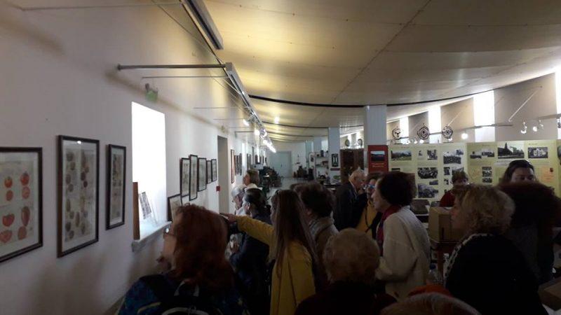 Γεωργικό Μουσείο (7)